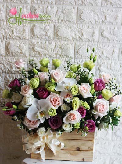 Hoa chúc mừng - Dành cho phái đẹp